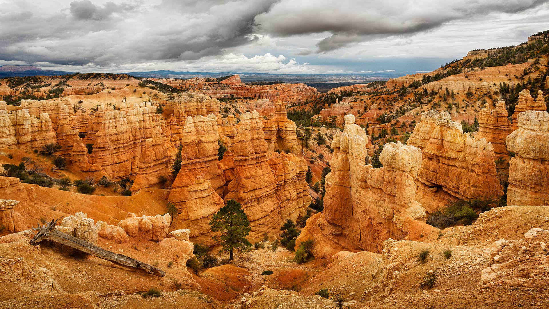 Bryce Canyon. Utah, USA