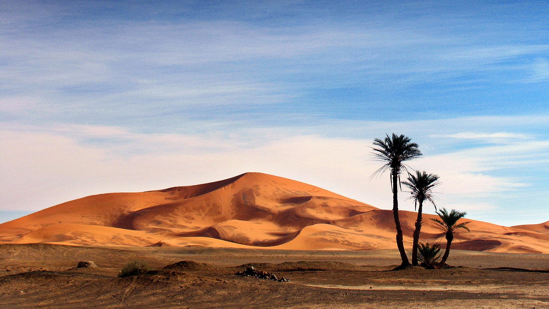 Merzouga. Morocco