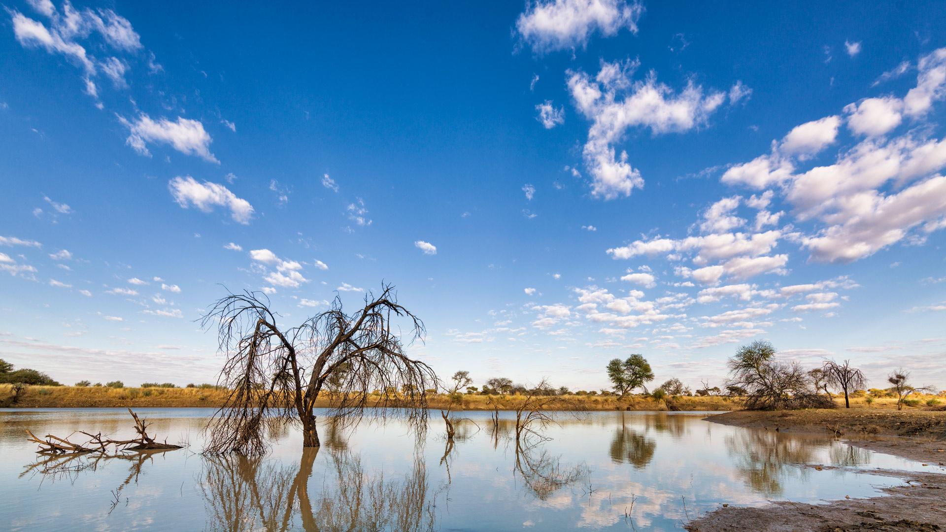 Otjiwa. Namibia