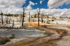 Yellowstone National Park. Wyoming